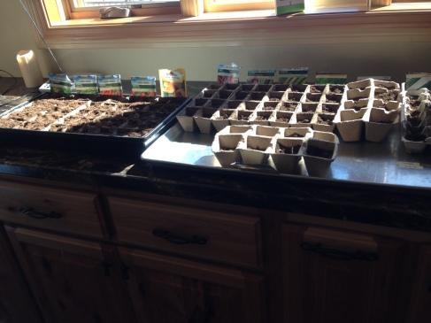 Seeds inside