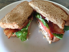 Classic American Sandwich