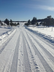 Cleared road