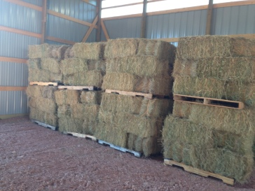Hay in the barn is as good as money in the bank