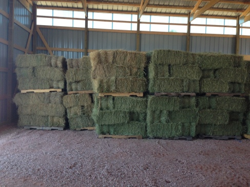 Stacked hay in the barn