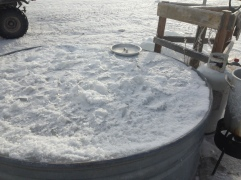 A recent view of the water tank before we broke the ice