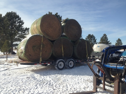 A big load of hay