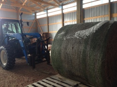 Stacking in the barn
