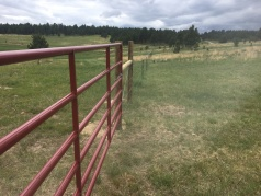 A finished gate and fence line